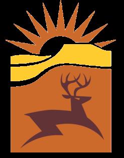 CF-Logo Clear